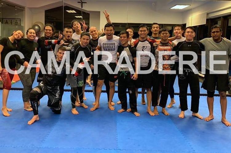 NO GI MMA