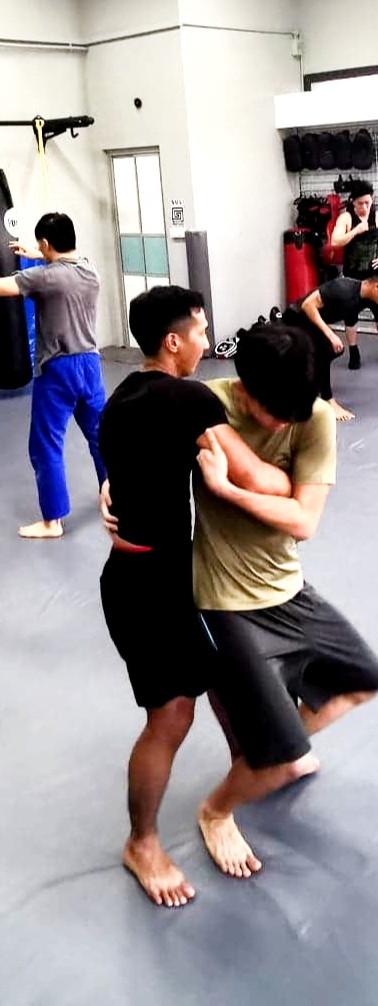wrestling sambo judo