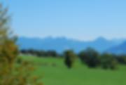 Pré_vert_Alpes.png