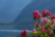 Lac_de_Hallstättersee.png