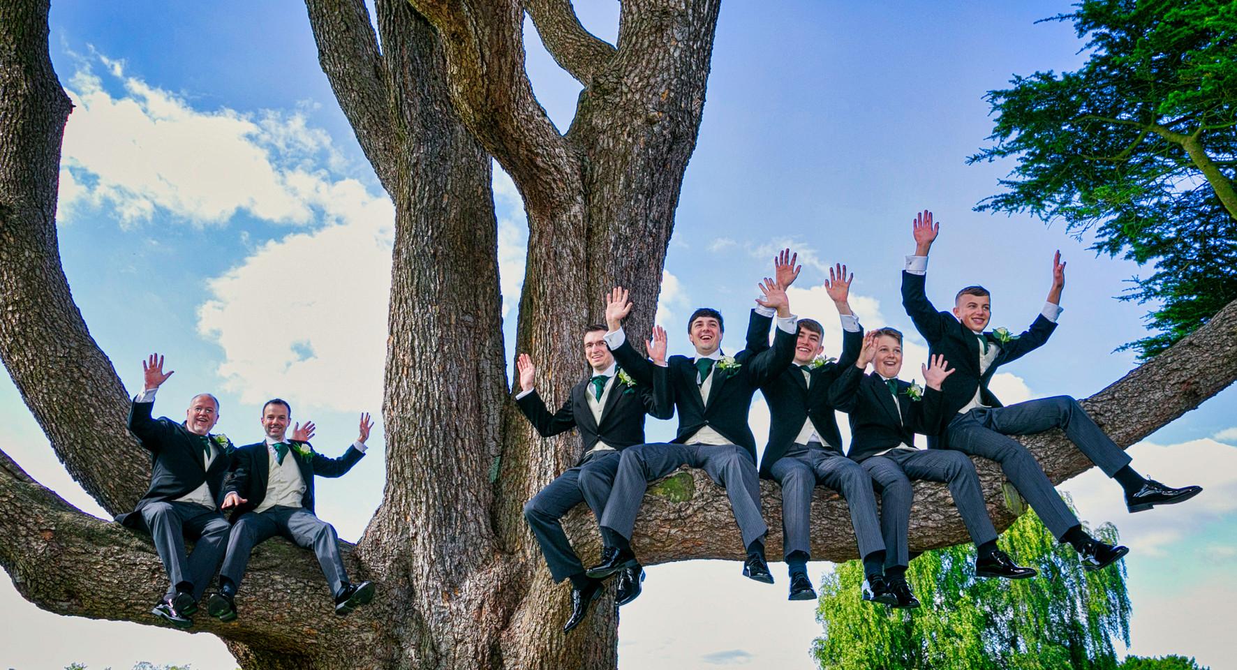 groomsmen on tree