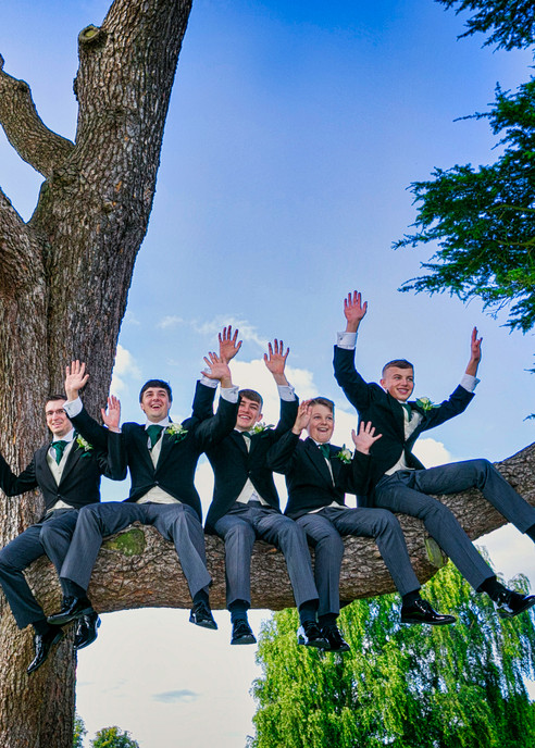 groomsmen on tree