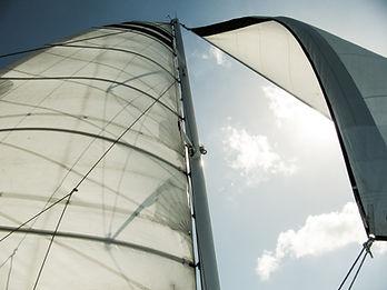 halve wind.jpg