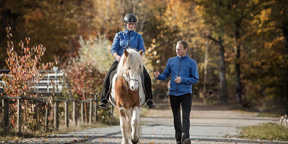 Individuelles Training für Reiter und Pferd mit Abendseminar