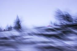 P-FAP_13_1- Tahoe snow-015