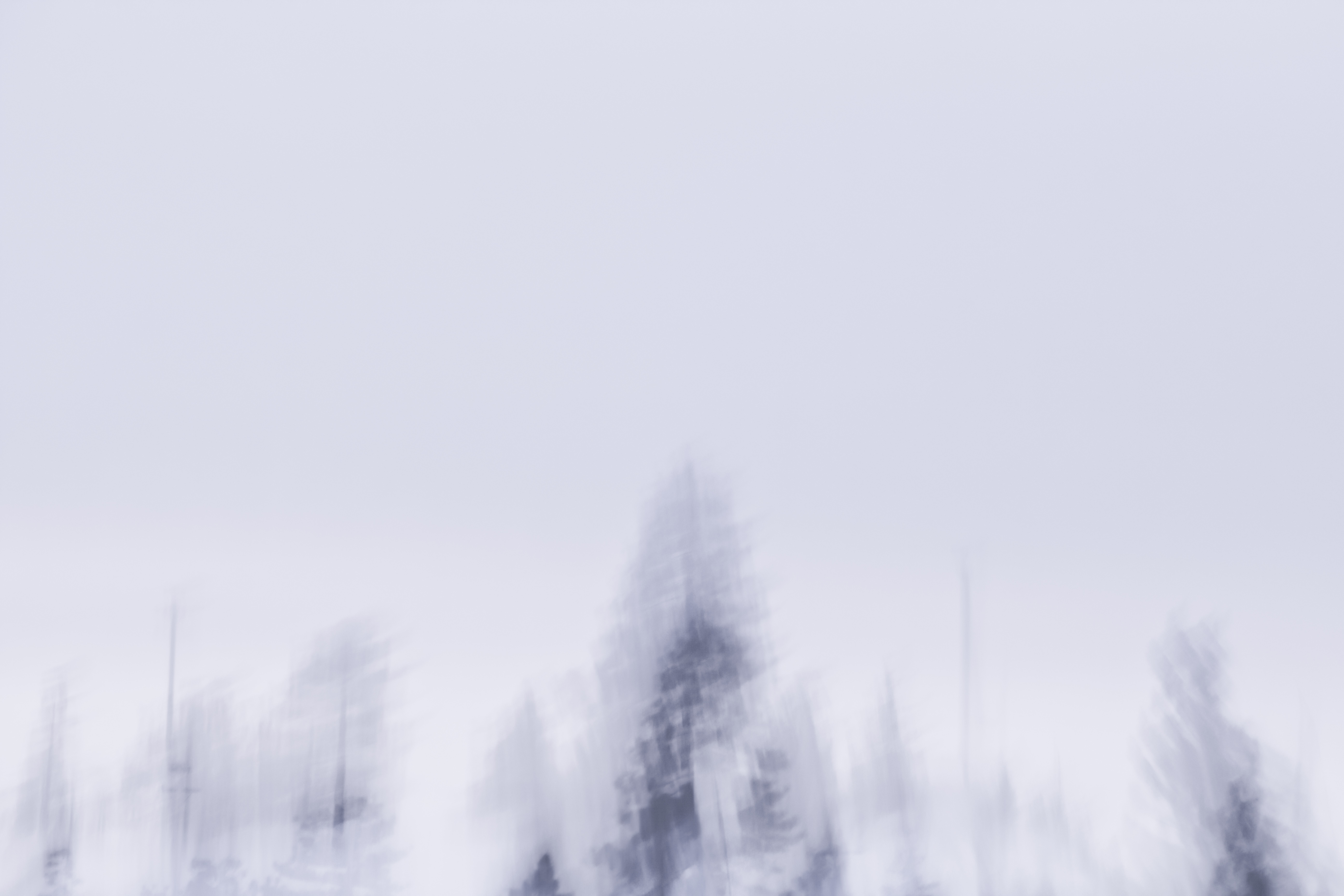 P-FAP_13_1- Tahoe snow-017