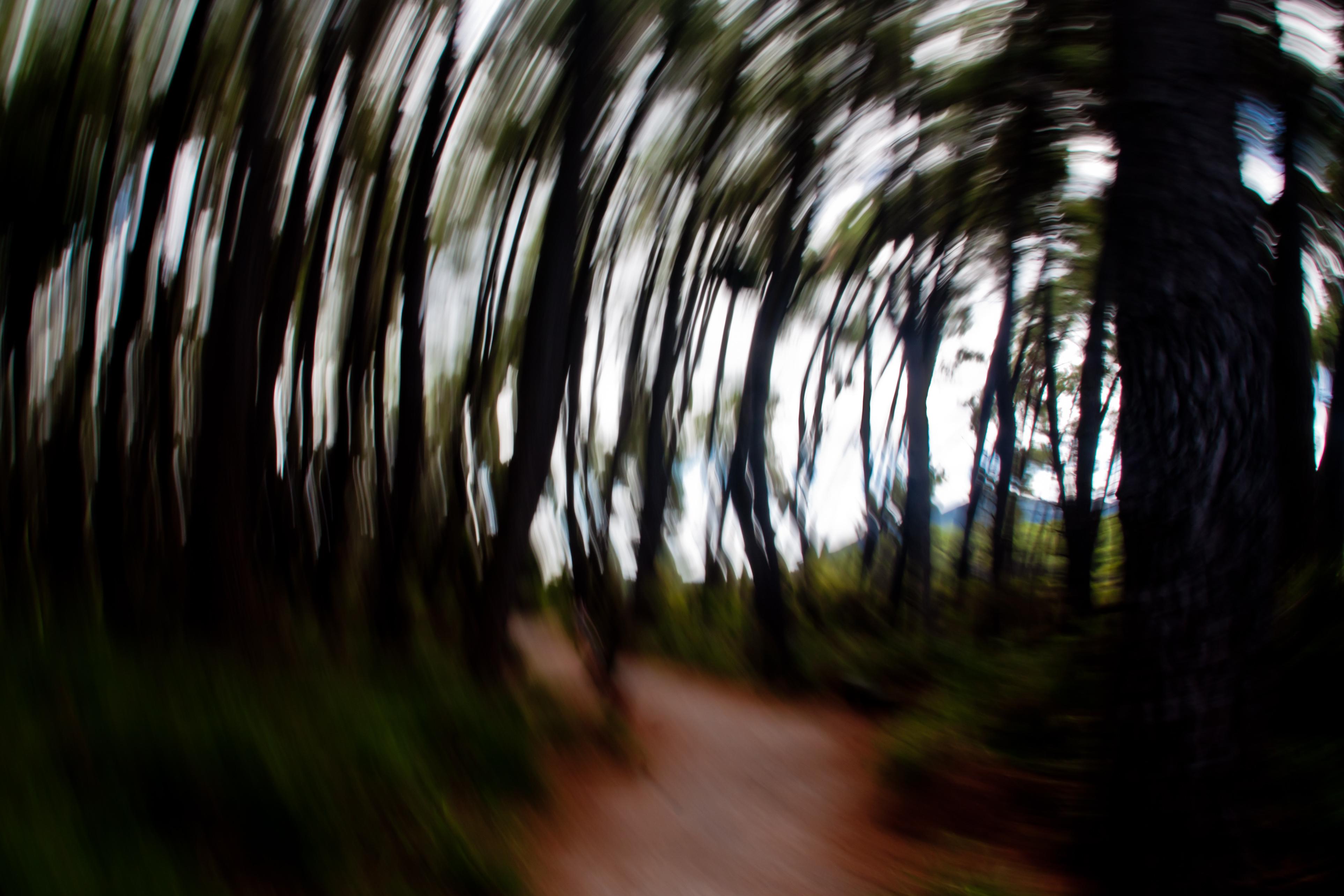 P-FAP_11_NZ landscape-008