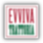Eviva-logo.png