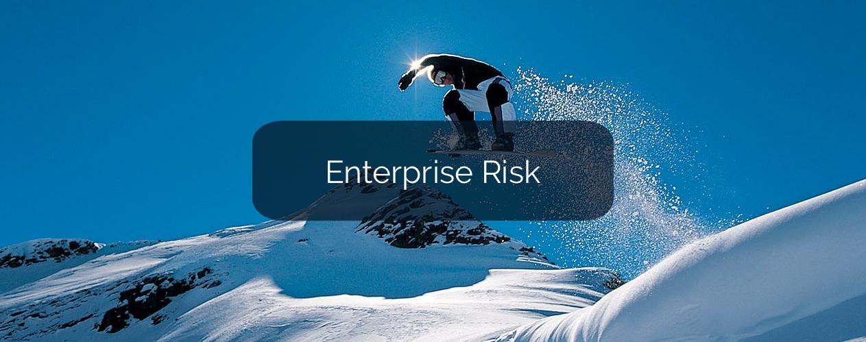 Enterprise Risk Advisory