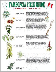 Book - Medicinal Plants Tambopata.png