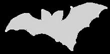 Bat%20black%20transp1_edited.png