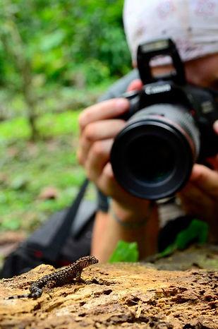 Herps - Photographing a gekko (Patrick C