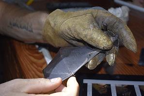 Examining a bat's wing during a Fauna Forever neotropical bat survey
