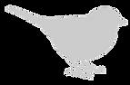 Bird%20finch%20right%20transparent_edite