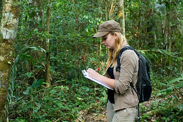 Data collection during a Fauna Forever primate survey