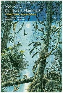 Book - Neotropical Rainforest Mammals.jp