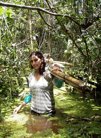 Citizen Science Volunteer helping to move mist-nets for a Fauna Forever neotropical bat survey