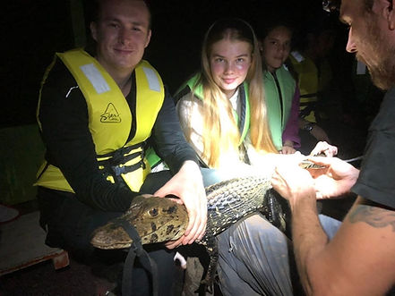 Norwegian students helping to examine a Black Caiman (Melanosuchus niger) during a Fauna Forever river survey
