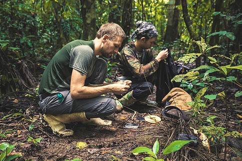A Herpetofauna coordinator and intern collecting data during a Fauna Forever herpetological survey