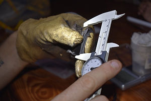 Bat forearm being measured during a Fauna Forever bat survey