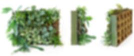 BioTile2_edited.jpg