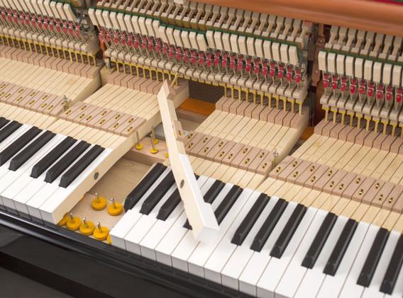 FEURICH 122 Universal - Keys felt