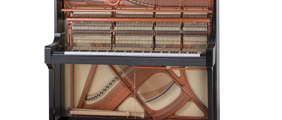 FEURICH 133 Concert - Interior