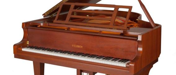FEURICH 162 Dynamic I - Walnut Satin