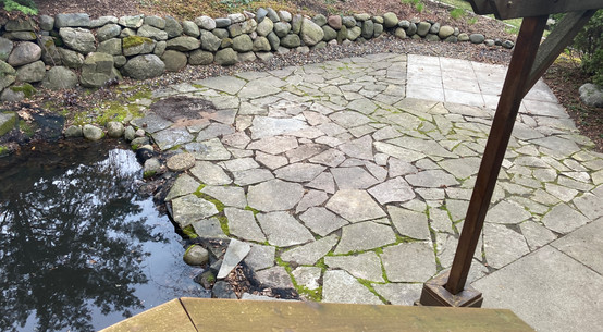 A before of a backyard designed by Angela