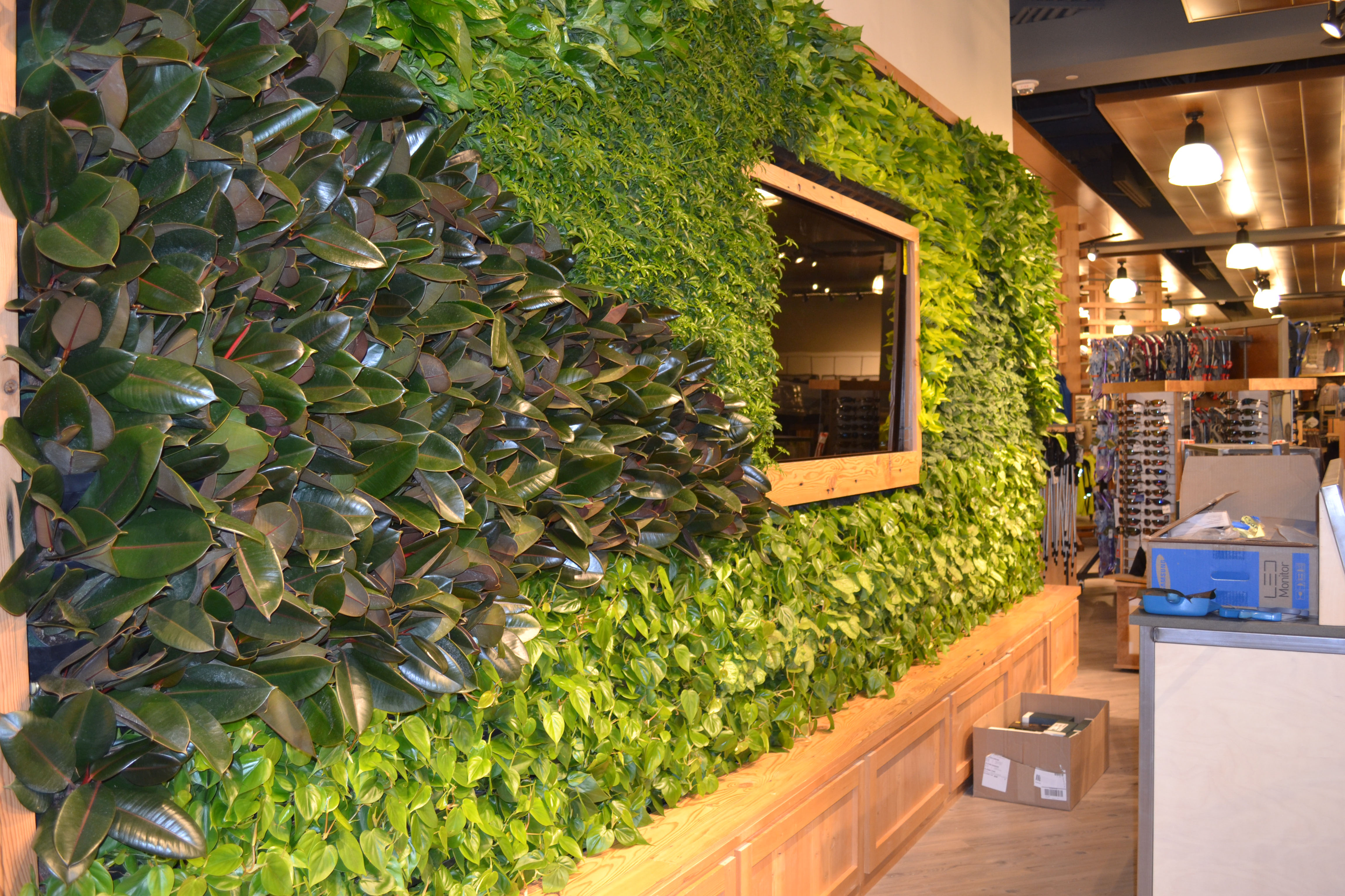 Designed by Interior Landscaping