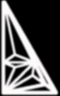 PICUDA_logo-dvodecedron blanco.png