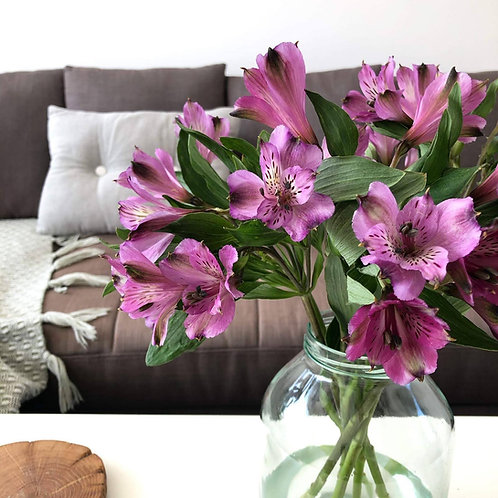 Bouquet of purple alstroemeria flowers