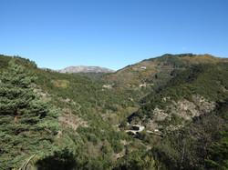Au loin le massif du Tanargue