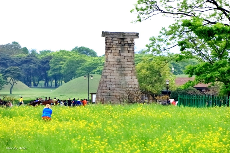 Gyeongju City Tour 136.JPG