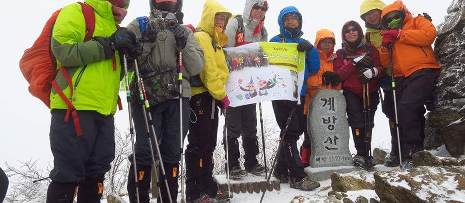 Walk Korea Tours by Insights Korea