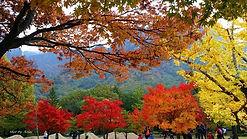 Mt. Seorak 111.jpg