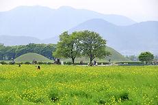Gyeongju City Tour 169.JPG