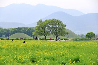 Gyeongju City Tour 169.JPG