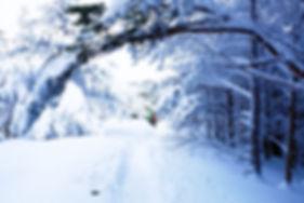 Snow Trekking 101.JPG