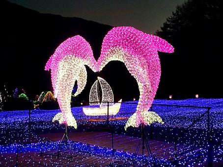 Lighting Festival at the Garden of Morning Calm.
