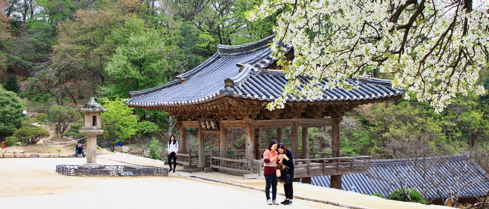 Inland of Korea Tour by Insights Korea