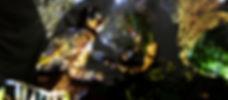 2018_Far-See-Er_DOKU_LB036_plantwoman_sm