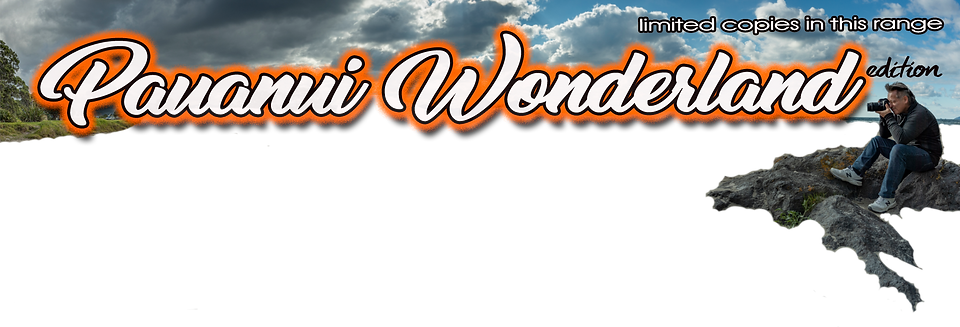 Pauanui Wonderland for website3.png