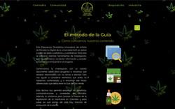 Guia del Oro verde-El metodo