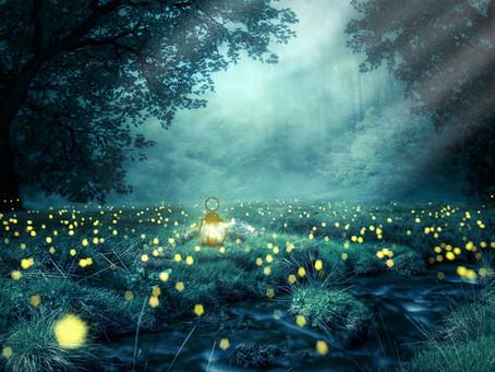 Constelación de luciérnagas