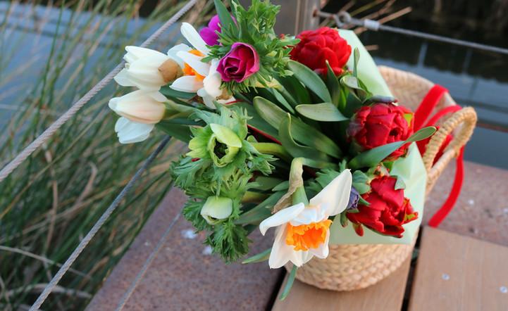 @minoushka_flors IMG_6654 s web.JPG