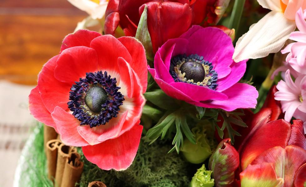@minoushka_flores IMG_6908 s web.jpg