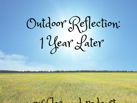 Outdoor Reflection:  1 Year Later