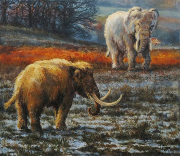 Bílý slon a trpasličí mamut | White Elephant And A Dwarf Mamooth