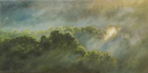 Mlhová čočka / Fog Lense